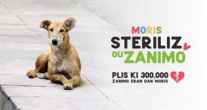 Campagne de sensibilisation à la STERILISATION des animaux