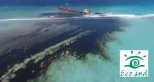 Mauritius Oil Spill Cleaning 2020 - MV WAKASHIO